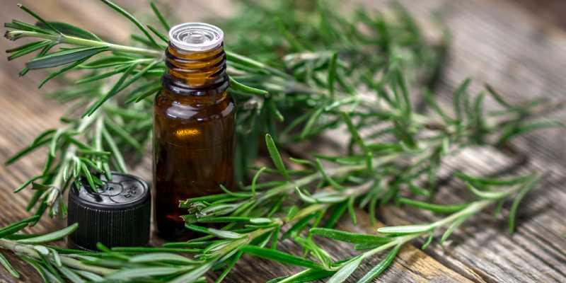 Aceite esencial de romero como desodorante natural