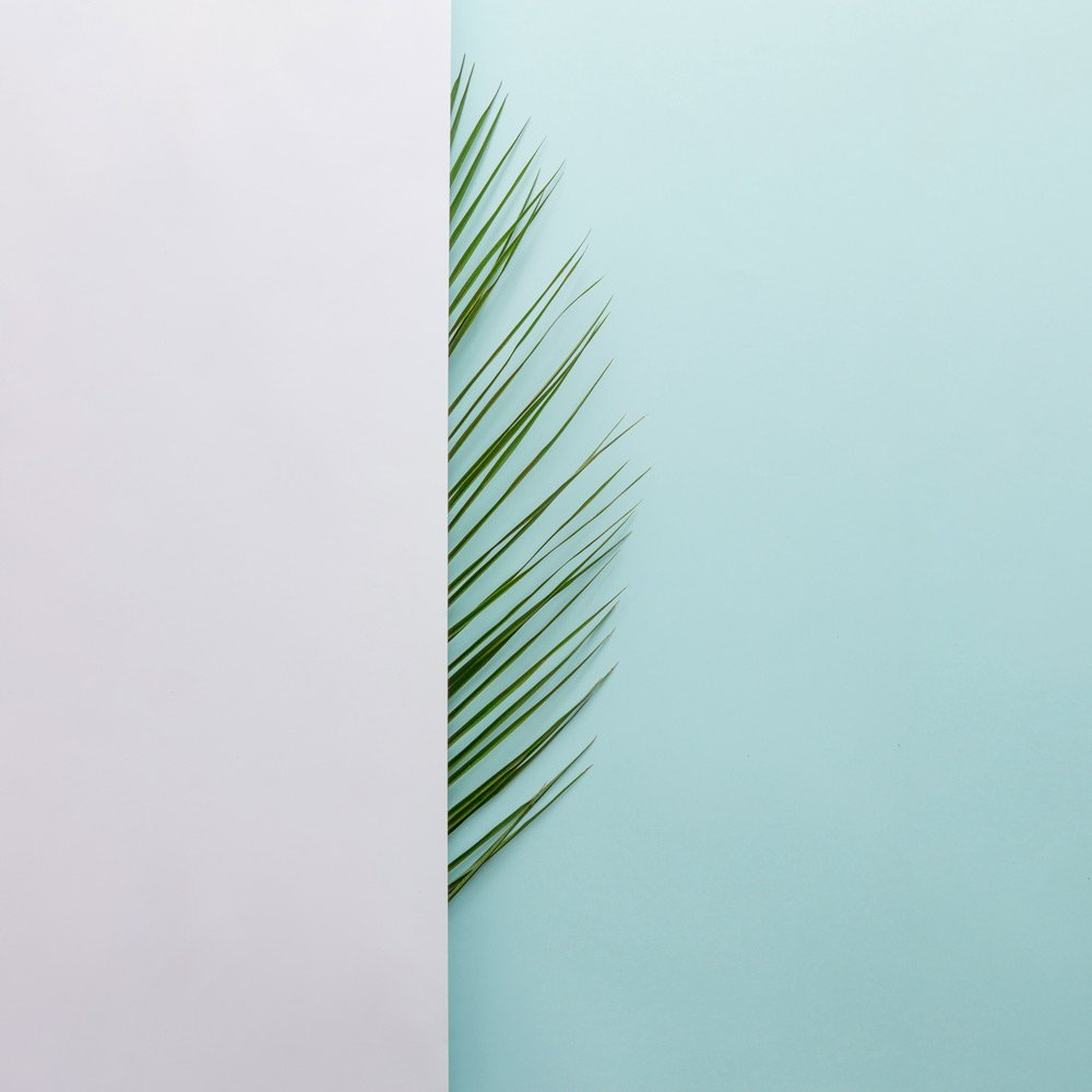 Efecto Green Blog Slow Life