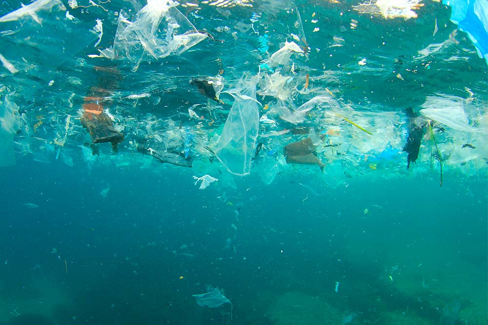 blog vivir sin plastico